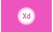 Curso de Adobe XD Básico