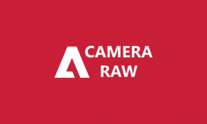 Imagem de Curso de Camera Raw Essencial