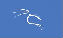 Curso de Kali Linux Fundamental