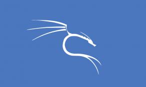 Imagem de Curso de Kali Linux Fundamental