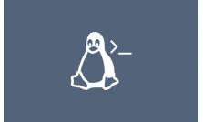 Curso de Linux CentOS com Foco em Terminal