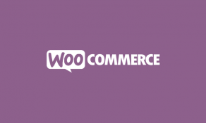 Imagem de Curso de WordPress WooCommerce Essencial